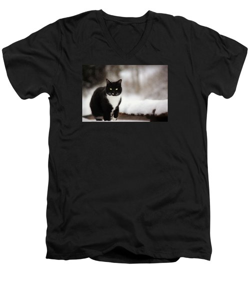 Kitty Snow Play Men's V-Neck T-Shirt