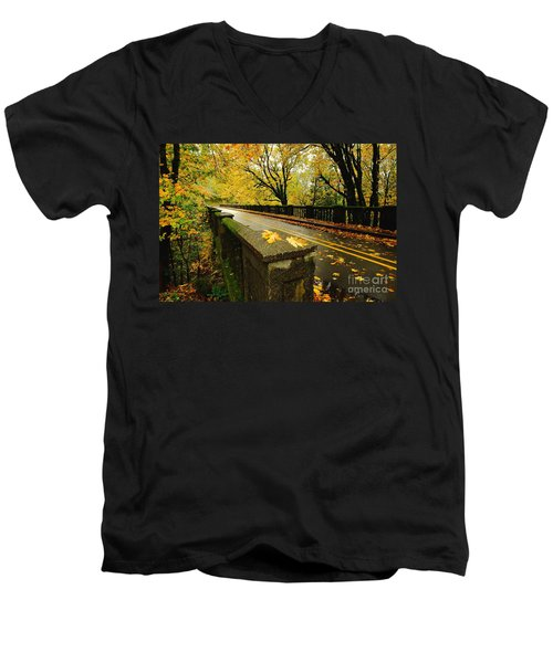 Leaves Of Gold Men's V-Neck T-Shirt