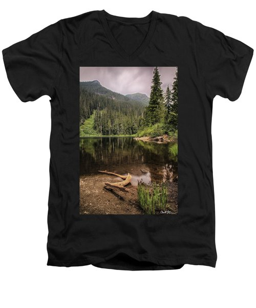 Lake Elizabeth Men's V-Neck T-Shirt