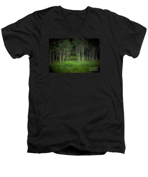 Last Night's Dream Men's V-Neck T-Shirt