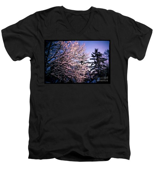 Last Peek Of Winter Sun Men's V-Neck T-Shirt