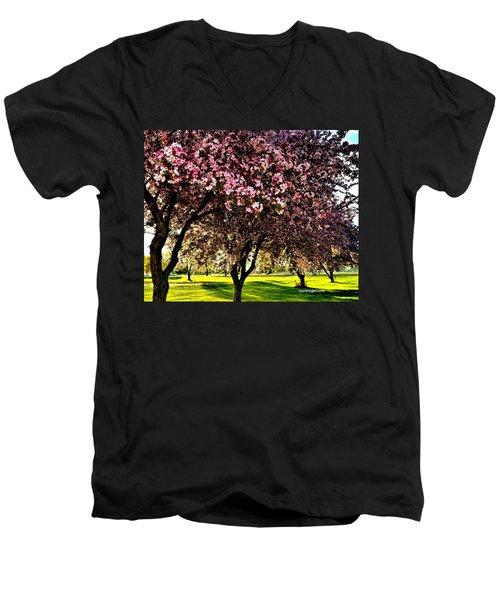 Late Afternoon At Lake Park Men's V-Neck T-Shirt