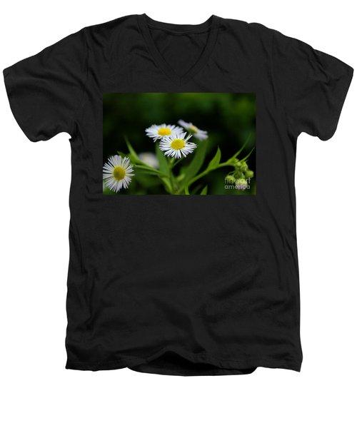 Late Summer Bloom Men's V-Neck T-Shirt by Melissa Petrey