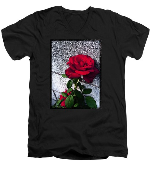 Men's V-Neck T-Shirt featuring the photograph Late Summer Rose by Shawna Rowe