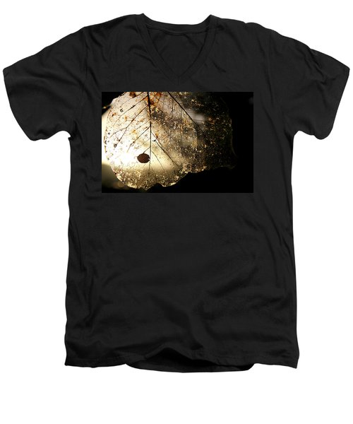 Faerie Wings II Men's V-Neck T-Shirt