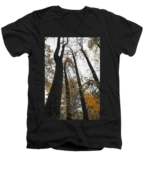 Men's V-Neck T-Shirt featuring the photograph Leaves Lost by Photographic Arts And Design Studio