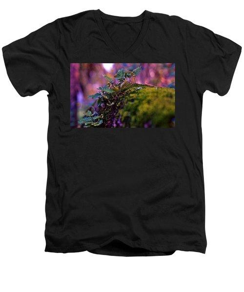 Leaves On A Log Men's V-Neck T-Shirt