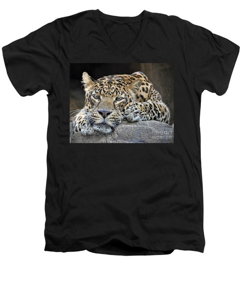 Men's V-Neck T-Shirt featuring the photograph Leopard by Savannah Gibbs