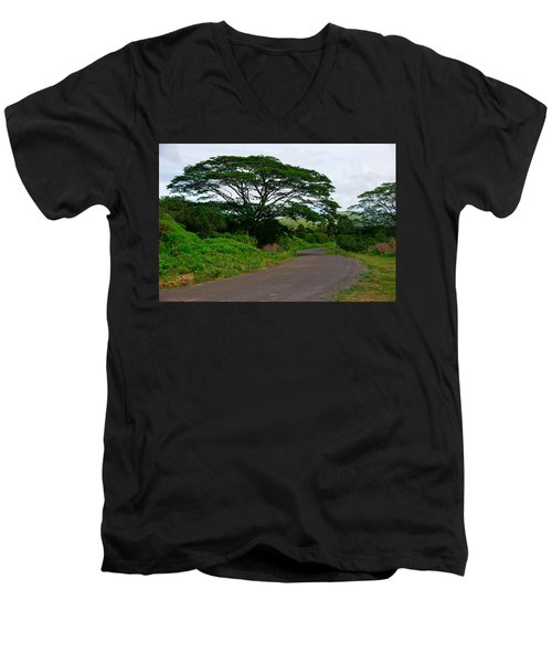 Less Traveled Road Men's V-Neck T-Shirt
