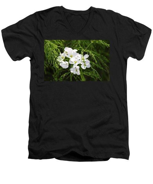 Light Of The White Men's V-Neck T-Shirt