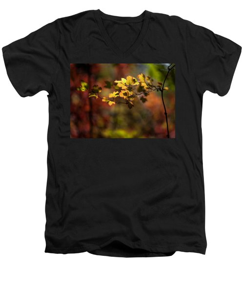 Men's V-Neck T-Shirt featuring the photograph Lightly Falling by Aaron Aldrich