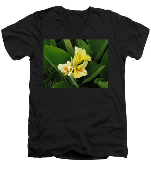 Lilly Of Shreveport Men's V-Neck T-Shirt