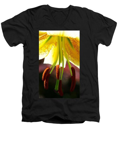 Lily Chandelier Men's V-Neck T-Shirt