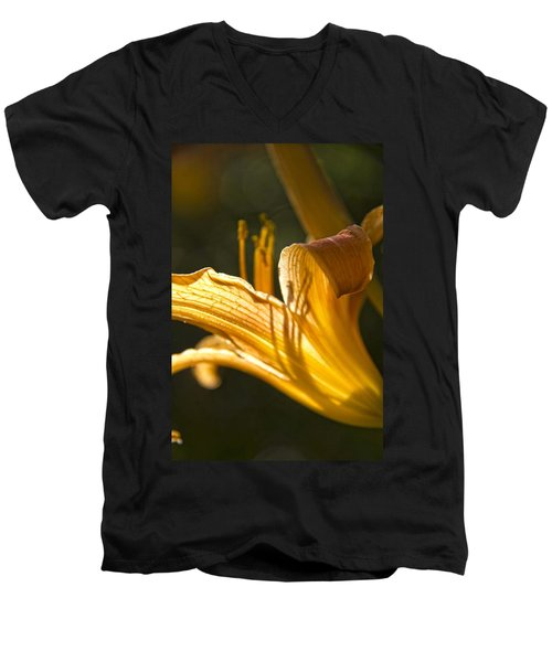 Lily In The Yard Men's V-Neck T-Shirt