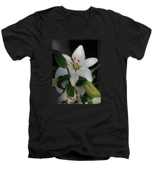 Lily White Men's V-Neck T-Shirt