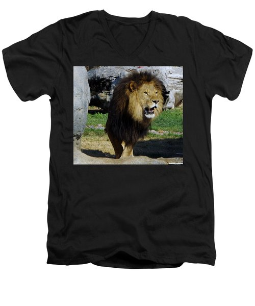Lion 2 Men's V-Neck T-Shirt