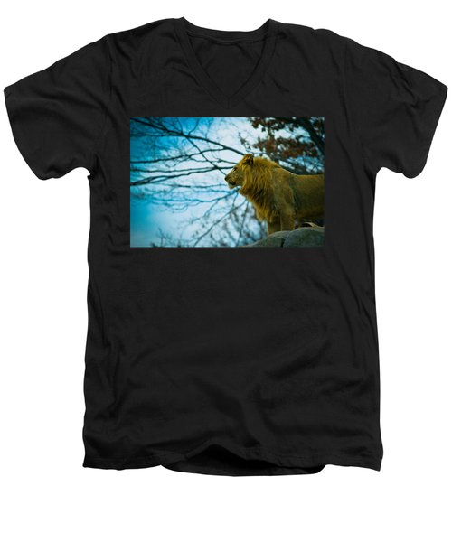 Lion King Men's V-Neck T-Shirt by Sara Frank