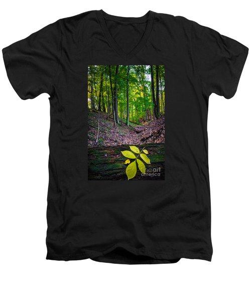 Little Valley Men's V-Neck T-Shirt