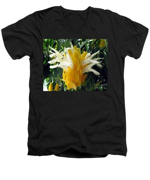 Lolliepop Plant Men's V-Neck T-Shirt by Jennifer Wheatley Wolf