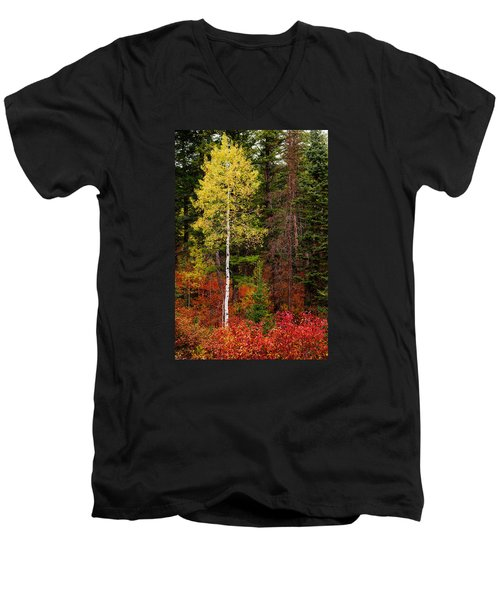 Lone Aspen In Fall Men's V-Neck T-Shirt by Chad Dutson