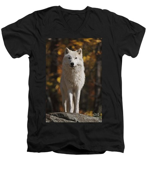 Men's V-Neck T-Shirt featuring the photograph Look Out by Wolves Only