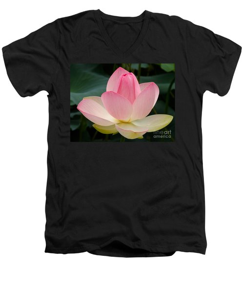 Men's V-Neck T-Shirt featuring the photograph Lotus In Bloom by Byron Varvarigos