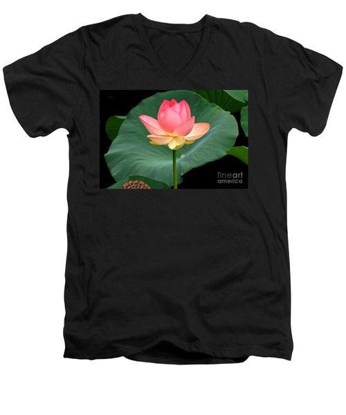 Lotus Of Late August Men's V-Neck T-Shirt