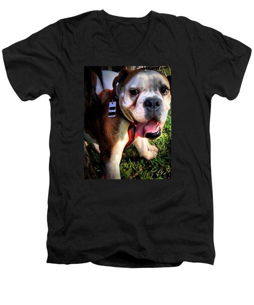 Men's V-Neck T-Shirt featuring the photograph Loubird by Robert McCubbin
