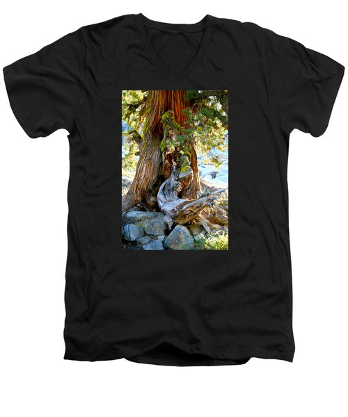 Lovely Tree Maiden Men's V-Neck T-Shirt