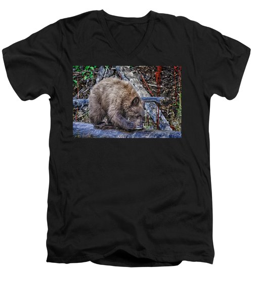 Men's V-Neck T-Shirt featuring the photograph Lunch Break by Jim Thompson