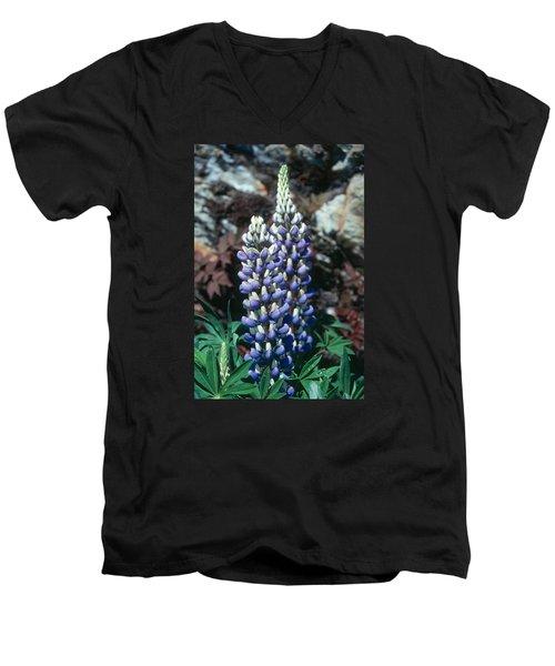 Lupine 2 Men's V-Neck T-Shirt by Andy Shomock