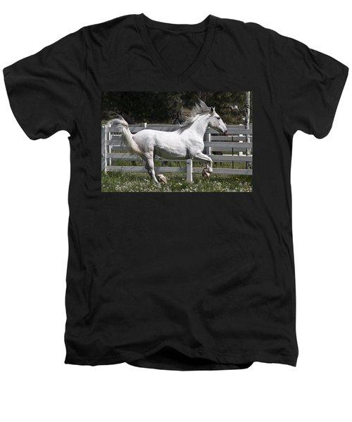 Maestoso Aurorra Men's V-Neck T-Shirt by Wes and Dotty Weber