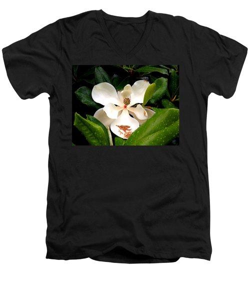 Mag Rain Men's V-Neck T-Shirt