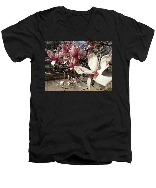 Men's V-Neck T-Shirt featuring the photograph Magnolia Branches by Caryl J Bohn
