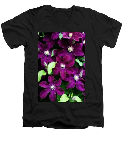 Majestic Amethyst Colored Clematis Men's V-Neck T-Shirt
