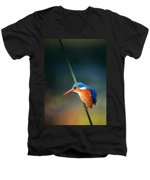 Malachite Kingfisher Men's V-Neck T-Shirt by Johan Swanepoel