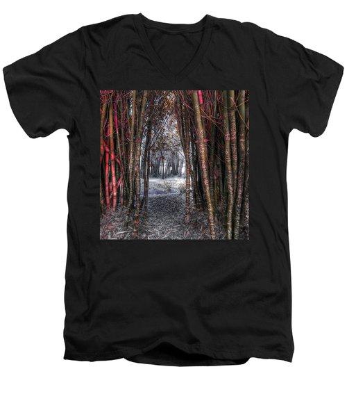 Malice In Wonderland Men's V-Neck T-Shirt