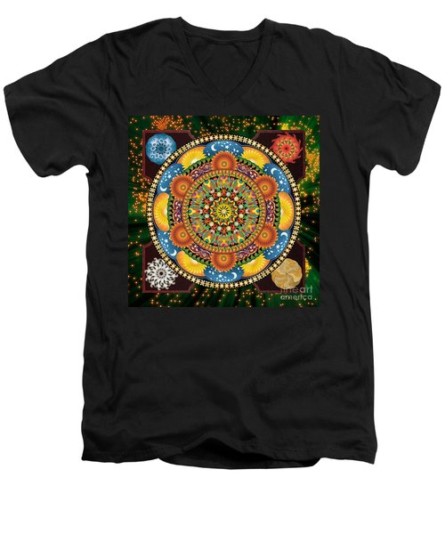 Mandala Elements Men's V-Neck T-Shirt
