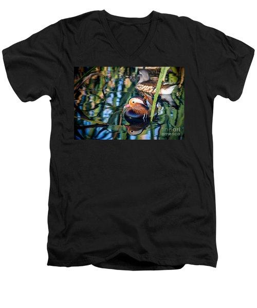 Mandarin Duck Reflections Men's V-Neck T-Shirt