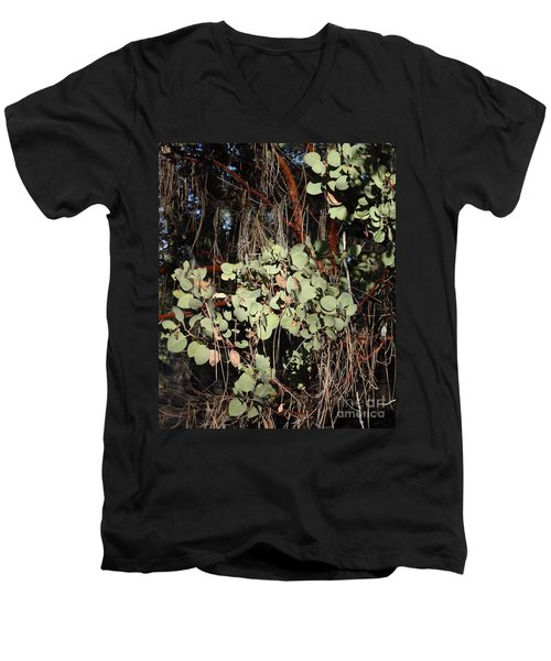 Manzanita Men's V-Neck T-Shirt