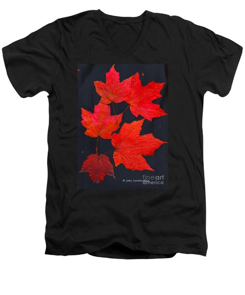 Men's V-Neck T-Shirt featuring the photograph Maple Leaf Tag by Joan Hartenstein