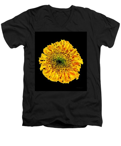 Marigold Men's V-Neck T-Shirt