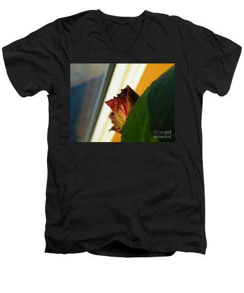 Men's V-Neck T-Shirt featuring the photograph Mellow Mourning by Brian Boyle