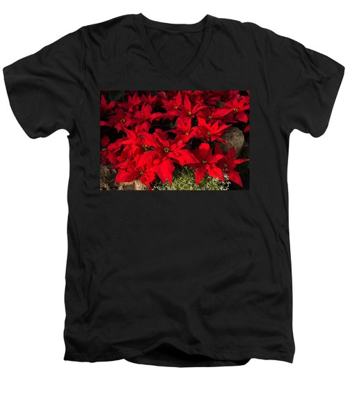 Merry Scarlet Poinsettias Christmas Star Men's V-Neck T-Shirt