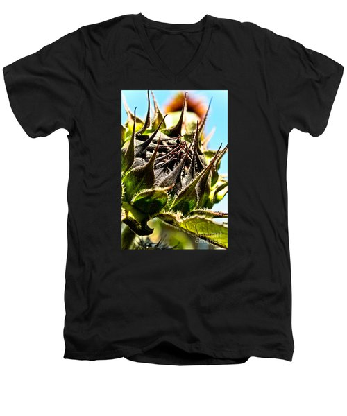 Mexican Sunflower Men's V-Neck T-Shirt