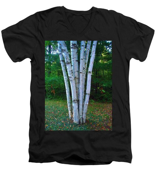 Men's V-Neck T-Shirt featuring the photograph Micro-grove by Daniel Thompson