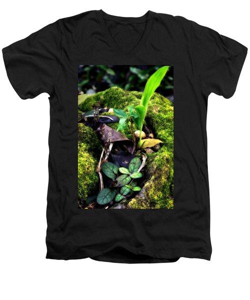 Men's V-Neck T-Shirt featuring the photograph Miniature Garden by Jim Thompson