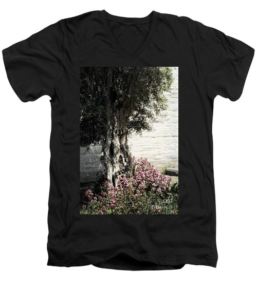 Men's V-Neck T-Shirt featuring the photograph Mission San Jose Tree Dedicated To The Ohlones by Ellen Cotton