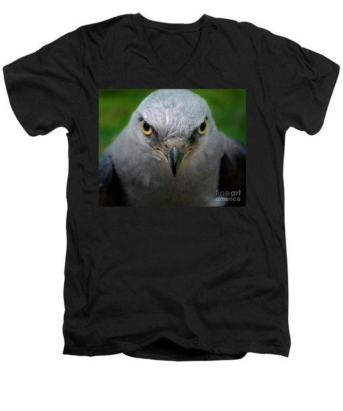 Mississippi Kite Stare Men's V-Neck T-Shirt