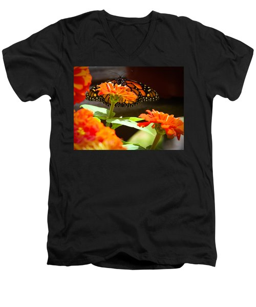 Men's V-Neck T-Shirt featuring the photograph Monarch Butterfly II by Patrice Zinck